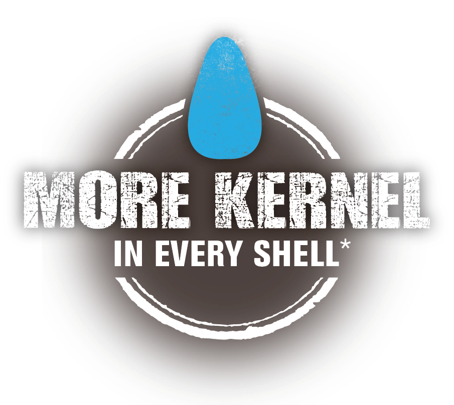 More kernel in every shell